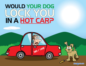 Would Your Dog Lock You in a Hot Car?